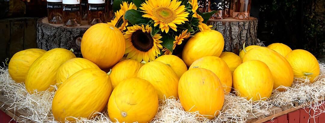 Boutique-un-coin-de-jardin-robion citron
